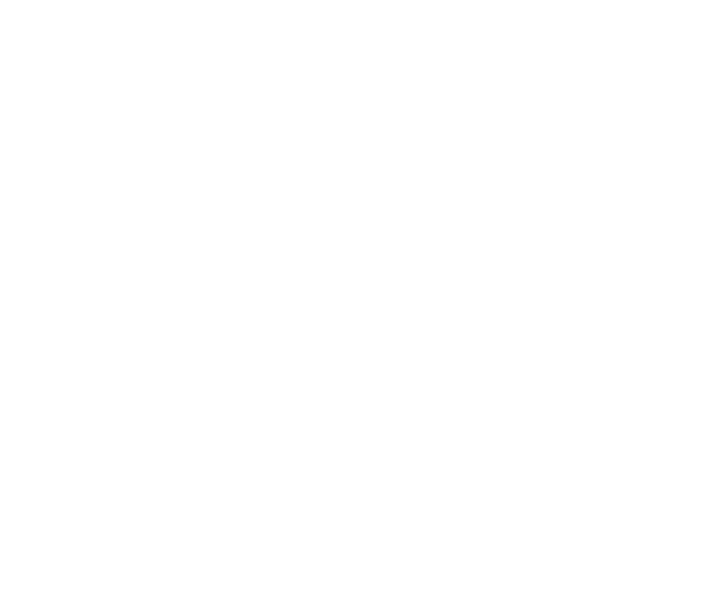 Chambers Litigation Support 2019